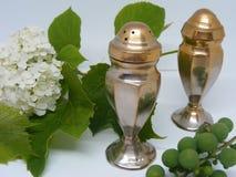 Agitatori di sale e di pepe di metallo surdimensionati, composizione isolata Immagine Stock
