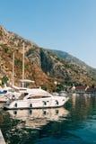 Żaglówka blisko starego miasteczka Kotor, zatoka Kotor Obraz Royalty Free