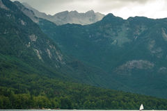 Żaglówka na Jeziornym Bohinj w Slovenia Obraz Stock