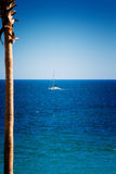 Żaglówka na morzu Cortez Zdjęcie Royalty Free
