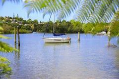 Żaglówka na zatoce nowe Zelandii Obrazy Stock