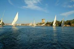 Żaglówki na Nil rzece, Aswan, Egipt, afryka pólnocna Obrazy Royalty Free
