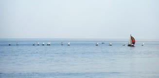 Żaglówki regatta grupowa rasa na morzu Obrazy Stock