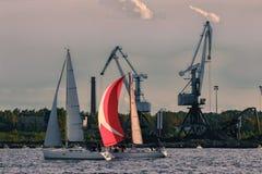 Żaglówki regatta na Daugava rzece Obrazy Stock