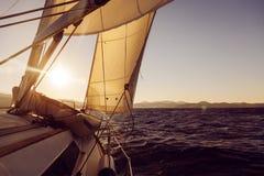 Żaglówki uprawa podczas regatta przy zmierzchu oceanem Zdjęcie Royalty Free