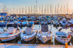 Żaglówki w marina port Livorno Obraz Royalty Free