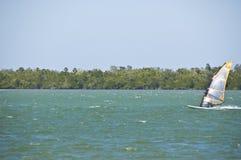 żagla surfing Zdjęcie Royalty Free