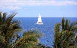 żagle hawajczyków Zdjęcie Royalty Free