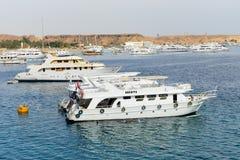 Żagli jachty z turystami są w schronieniu sharm el sheikh Obrazy Stock