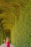 AGLIE TURYN, WŁOCHY,/- OKOŁO 5 2016 SIERPIEŃ: Zielona szklarnia kasztel AGLIE na SIERPIEŃ 5 2016, w AGLIE Fotografia Royalty Free