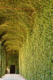AGLIE ` TURYN, WŁOCHY,/- OKOŁO SIERPIEŃ 2016: Zielona szklarnia kasztel AGLIE ` na SIERPIEŃ, 2016, w AGLIE ` Fotografia Royalty Free