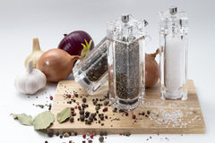 Aglio, cipolle, mulino di vetro con pepe e sale sopra Fotografia Stock