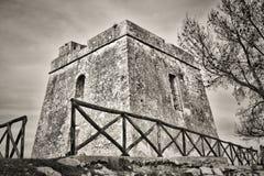aglio dell torre Fotografia Royalty Free