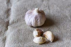 Aglio e chiodi di garofano di aglio su insaccamento fotografia stock