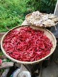 Aglio e peperoncini rossi fotografie stock libere da diritti