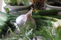 aglio ed erbe Fotografia Stock