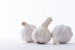 Aglio fresco di allium sativum isolato su fondo bianco Immagini Stock Libere da Diritti