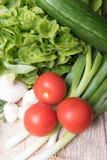 Aglio fresco, timo, alloro, cetriolo, cipolle, cipolle di inverno, pomodoro Fotografia Stock
