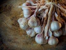 aglio Lampadina dell'aglio su di legno Fotografie Stock