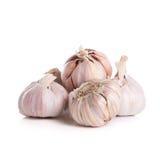 Aglio organico fresco, chiodi di garofano e chiodo di garofano di aglio cutted isolati sopra immagine stock libera da diritti