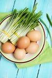 Aglio orsino ed uova, vista superiore Fotografie Stock Libere da Diritti