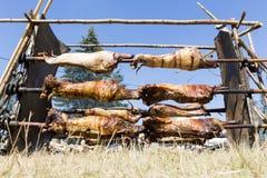 Agneau de cuisson dehors en Bulgarie Photographie stock