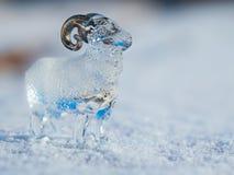 Agneau en verre dans la neige Photo stock