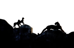 Agneaux de chasse de panthère Image stock