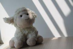 Agnelez le jouet se reposant par la fenêtre dans les ombres Photographie stock libre de droits