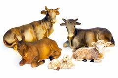 Agnelli e mucche Immagini Stock