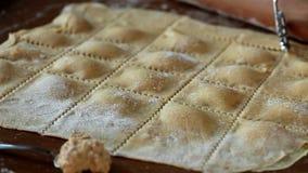 Agnolotti Pasta Cut stock video