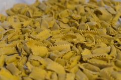 Typical pasta of the Langhe: agnolotti Royalty Free Stock Photo