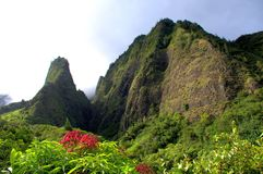 Ago di Iao, Maui, Hawai Immagine Stock Libera da Diritti