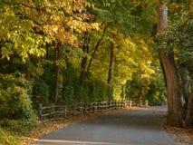 Łagodna wiejska droga w jesieni Obrazy Royalty Free