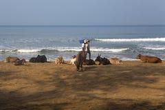 Agonda beach at Goa, India Stock Photo
