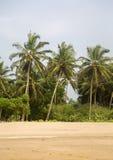 Agonda, India Zdjęcie Royalty Free