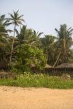 Agonda plaża w India Zdjęcie Stock