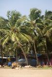 Agonda plaża w India Obrazy Royalty Free
