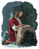 Agony in the garden. Jesus in Gethsemane scene. Night before the crucifixion Royalty Free Stock Photography