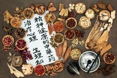 Agopuntura cinese e terapia di erbe Fotografia Stock