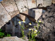 Agory miejsca archeological ruiny w Izmir Zdjęcia Royalty Free