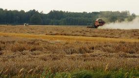 2016 21 agosto, Lituania, regione di Ukmerges Macchina della mietitrice per raccogliere funzionamento del giacimento di grano agr archivi video