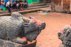 18 agosto 2014 - statua del toro in Patan, Nepal Immagine Stock Libera da Diritti