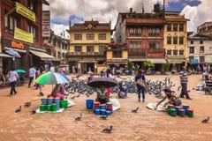 18 agosto 2014 - uccelli nel Boudhanath a Kathmandu, Nepal Fotografia Stock Libera da Diritti