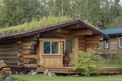 25 agosto 2016 - una cabina di ceppo del tetto della zolla Nenana Alaska a sud di Fairbanks Fotografie Stock