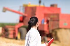 Agrónomo de la mujer en campo de trigo foto de archivo libre de regalías
