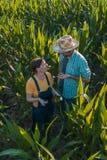Agrónomo de sexo femenino que aconseja al granjero del maíz en campo de la cosecha imagen de archivo libre de regalías