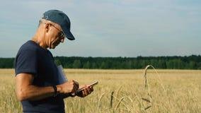 Agrónomo en el campo que estudia la cosecha de grano en el campo en un día de verano soleado almacen de video