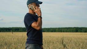 Agrónomo en el campo que estudia la cosecha de grano en el campo en un día de verano soleado metrajes
