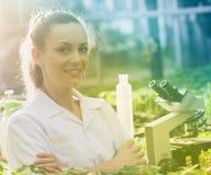 Agrônomo da mulher com os braços cruzados no greenhose imagem de stock royalty free